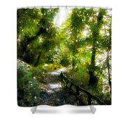 Deeper Into The Greenwood Shower Curtain