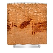 Deer And Bison Pictograph - Horseshoe Canyon - Utah Shower Curtain