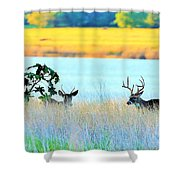 Deer At Sunset Shower Curtain