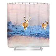 Deer At Winter Pond Shower Curtain