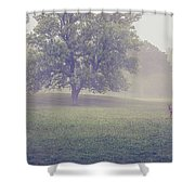 Deer By Barn On A Foggy Morning Shower Curtain