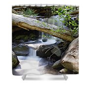 Deer Creek 03 Shower Curtain