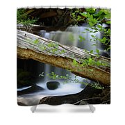 Deer Creek 13 Shower Curtain