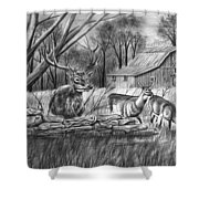Deer Field  Shower Curtain