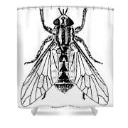 Deer Fly Shower Curtain