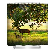 Deer In Autumn Meadow - Digital Painting Shower Curtain