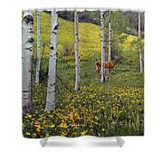 Deer In Spring Shower Curtain