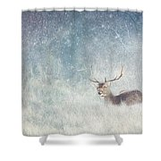 Deer In Winter Scene Shower Curtain