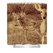 Deer Sepia V3 Shower Curtain