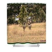 Deer Tails Shower Curtain
