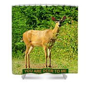 Deer To Me Shower Curtain