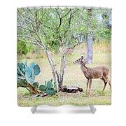 Deer19 Shower Curtain