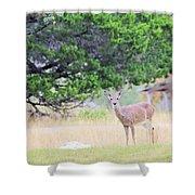 Deer21 Shower Curtain