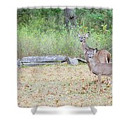 Deer47 Shower Curtain