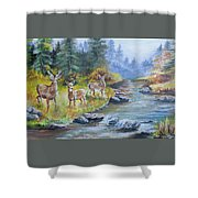 Deers At The Water Shower Curtain