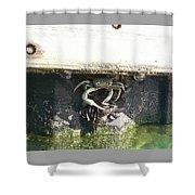 Defender Shower Curtain