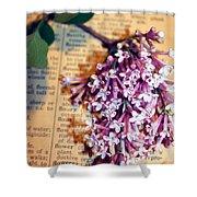 Defining Lilacs Shower Curtain