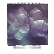 Definition Of Magic Shower Curtain