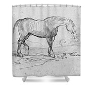 Degas, Horse.  Shower Curtain