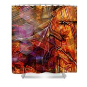 Deguello Sunrise Shower Curtain