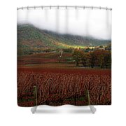 Del Rio Vineyard Shower Curtain