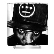 Del The Funky Homosapien Shower Curtain
