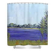 Delaware River Shower Curtain