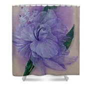 Delicacy Shower Curtain by Saundra Johnson