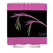 Delicate And Colorful Shower Curtain