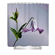 Delicate Bell Shower Curtain
