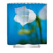 Delicate Bells Shower Curtain