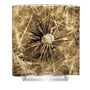 Delicate Dandelion Shower Curtain