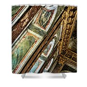 Delicate Details Versailles Chateau Up Close Interior France  Shower Curtain