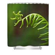 Delicate Fern Frond Spiral Shower Curtain
