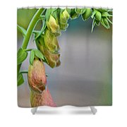 Delicate Hanging Blossom Shower Curtain