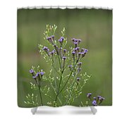 Delicate Lavender Verbena Wildflowers Shower Curtain