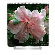 Delicate Pinks In Rain - Flower Photography Shower Curtain