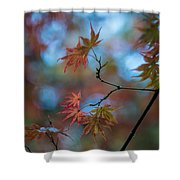 Delicate Signs Of Autumn Shower Curtain