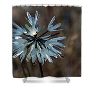 Delicate Silver Wildflower Shower Curtain