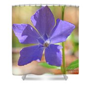 Delicate Touch In Square Shower Curtain