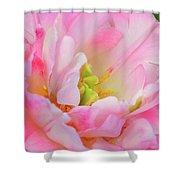 Delicate Tutu Shower Curtain