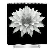 Delicate White Petals Shower Curtain