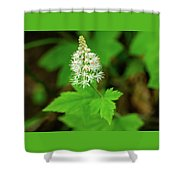 Delicate Wildflower Georgia Mountains Shower Curtain