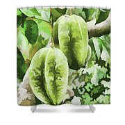 Delicious Star Fruit Shower Curtain