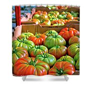Delicious Tomatoes Shower Curtain