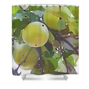 Delicious Yellow Apple In Summer Shower Curtain