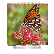 Delight Shower Curtain