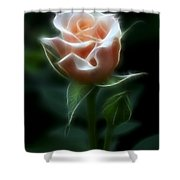 Delight In Beauty Shower Curtain