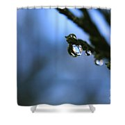 Delighted By Droplets Shower Curtain
