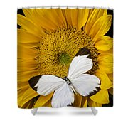 Delightful White Butterfly Shower Curtain